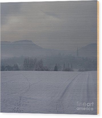 The Misty Wintery Afternoon Wood Print by Angel  Tarantella