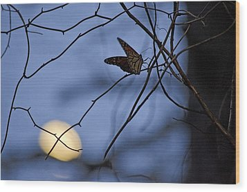 The Moon And The Monarch Wood Print by Jeff Rose