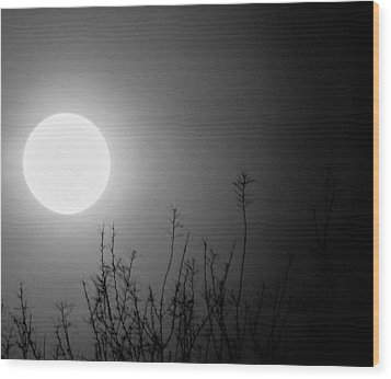 The Moon And The Stars Wood Print by John Glass