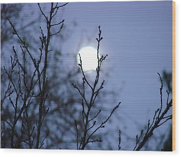 The Moon Wood Print by Liz Vernand