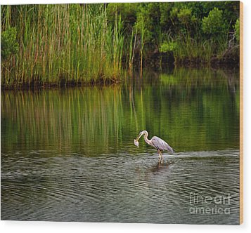 The Morning Catch Wood Print by Mark Miller