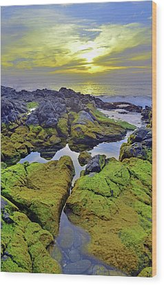 Wood Print featuring the photograph The Mossy Rocks At Sunset by Tara Turner