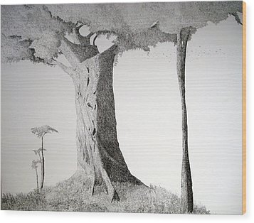 The Mother Lode Wood Print by A  Robert Malcom