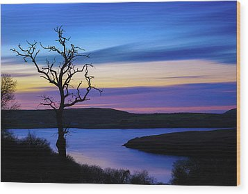 The Naked Tree At Sunrise Wood Print by Semmick Photo