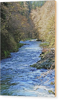 The Nestucca River Wood Print by Margaret Hood
