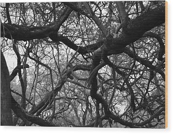 The Neural Net Wood Print by Tracey Myers