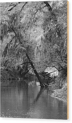The Neuse Wood Print by Lisa Stanley