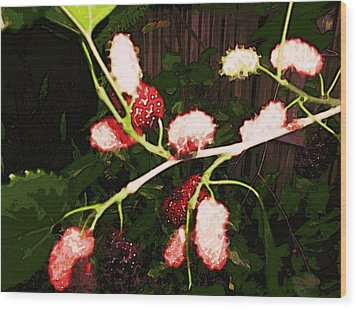 Wood Print featuring the digital art The New Mulberries by Winsome Gunning