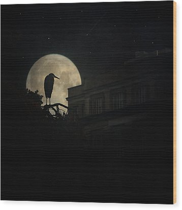 Wood Print featuring the photograph The Night Of The Heron by Chris Lord