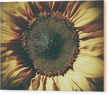 The Not So Sunny Sunflower Wood Print by Karen Stahlros