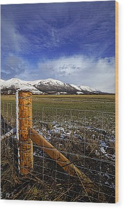 Wood Print featuring the photograph The Ochils In Winter by Jeremy Lavender Photography