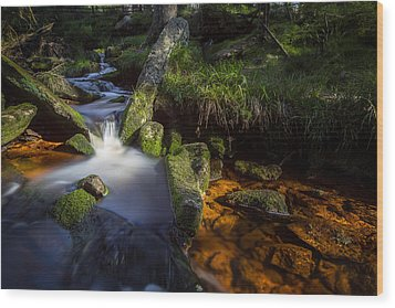 the Oder in the Harz National Park Wood Print