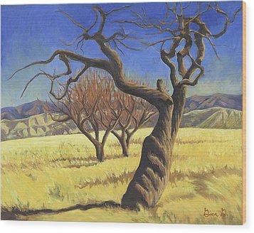 The Old Apple Tree Wood Print