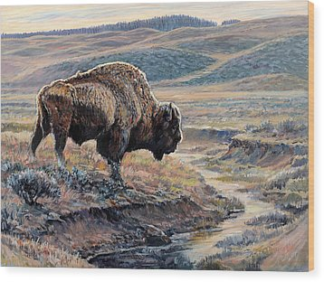 The Old Bull Wood Print by Steve Spencer