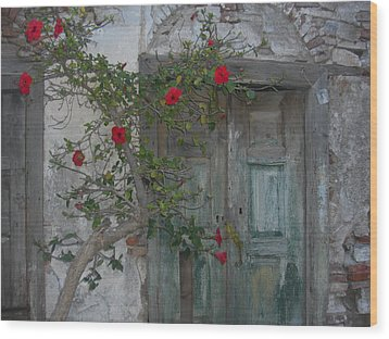 The Old Door And The Rose Bush Wood Print by Wilhelm Terrada