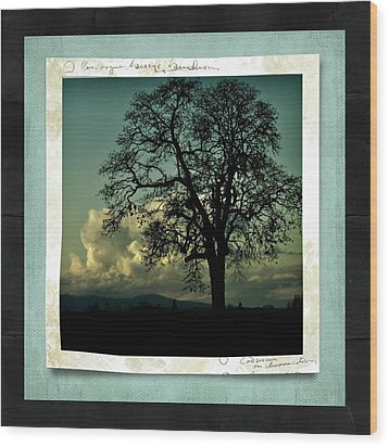 The Old Oak Wood Print by Bonnie Bruno