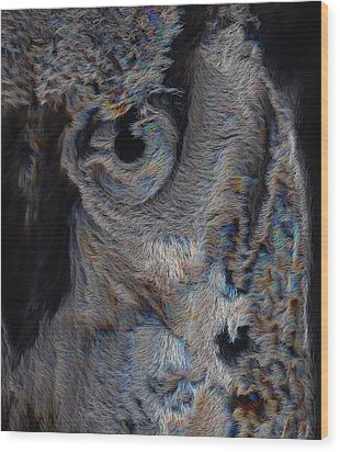 The Old Owl That Watches Wood Print by ISAW Gallery