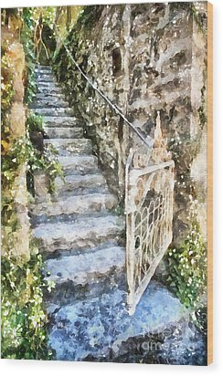 The Open Gate Wood Print by Shirley Stalter