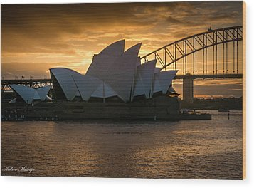 The Opera House Wood Print by Andrew Matwijec