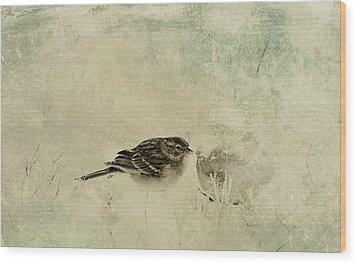 The Orange And Sparrow Wood Print