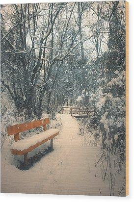 The Orange Bench Wood Print by Tara Turner