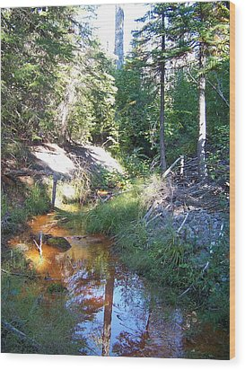 The Orange River Wood Print