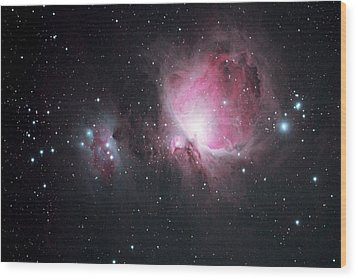 The Orion And The Running Man Nebulae Wood Print by Pat Gaines