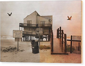The Osprey And The Pelican Wood Print by Betsy Knapp