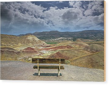The Overlook At Painted Hills In Oregon Wood Print