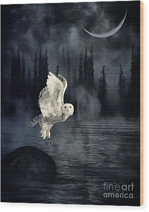 The Owl And Her Mystical Moon Wood Print by Heather King