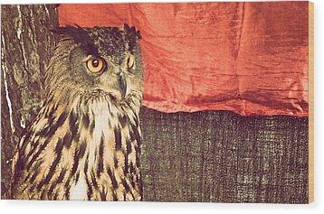 The Owl Wood Print by Pedro Venancio