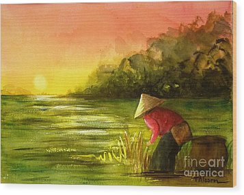 The Paddy Field Wood Print by Therese Alcorn