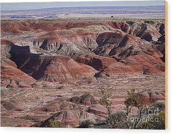 The Painted Desert  8062 Wood Print by James BO  Insogna