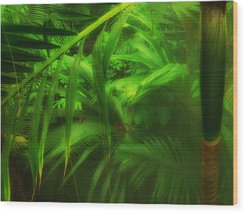 Wood Print featuring the photograph The Palm Forest  by Connie Handscomb