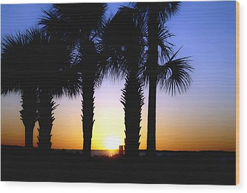 The Palms At Sunset Wood Print by Debra Forand