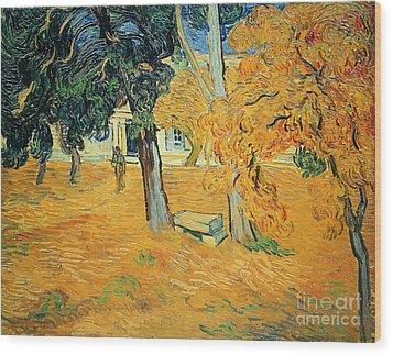 The Park At Saint Pauls Hospital Saint Remy Wood Print by Vincent van Gogh