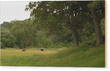 The Pasture Wood Print by Lisa Patti Konkol