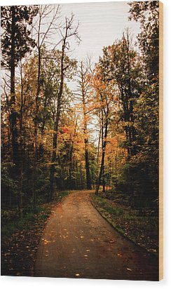 The Path Wood Print by Annette Berglund