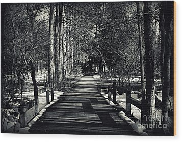 The Path Wood Print by Elizabeth Babler