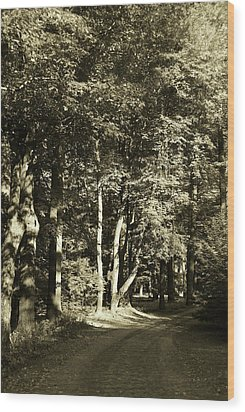 Wood Print featuring the photograph The Path Less Traveled by John Schneider
