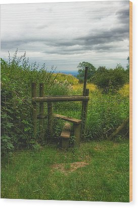 Wood Print featuring the photograph The Path Most Traveled  by Connie Handscomb