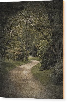 Wood Print featuring the photograph The Path by Ryan Photography
