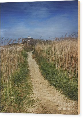 The Pathway Home Wood Print by Tom Gari Gallery-Three-Photography