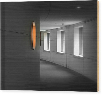 Wood Print featuring the photograph The Peabody Essex Museum by Laura DAddona