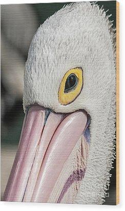 The Pelican Look Wood Print by Werner Padarin