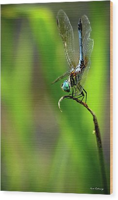 Wood Print featuring the photograph The Performer Dragonfly Art by Reid Callaway