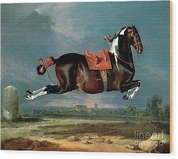 The Piebald Horse Wood Print by Johann Georg Hamilton