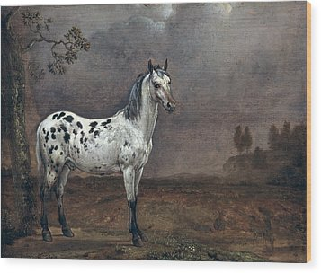 The Piebald Horse Wood Print by Paulus Potter
