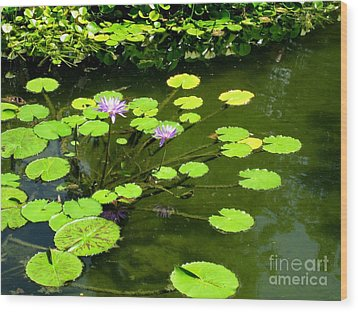Wood Print featuring the photograph The Pond by Robert D McBain