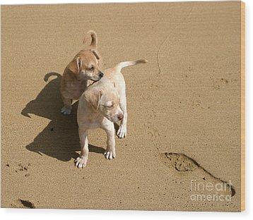 The Puppies Wood Print by Madeline Ellis